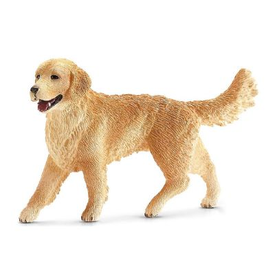 Golden retriever hembra de...
