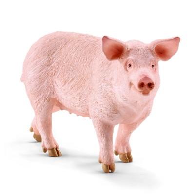 Los cerdos.